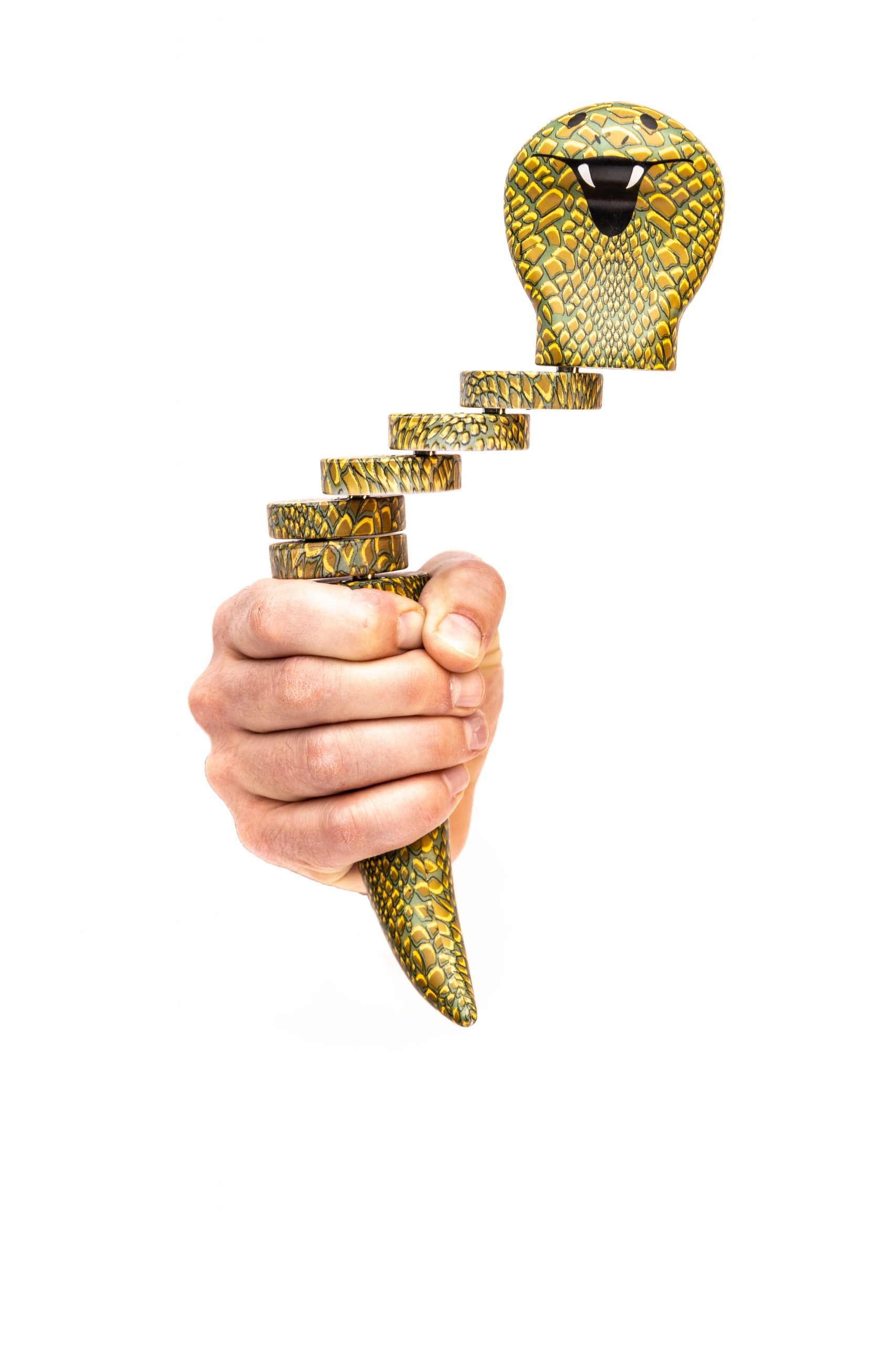 Hand with Snake Charmer toy by Trident Invents